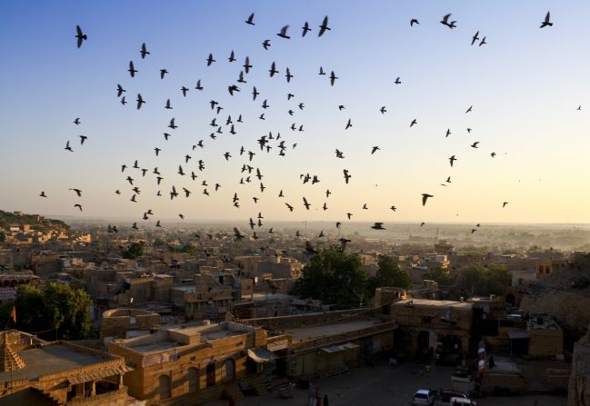 Birds above the city, Bikaner, Rajasthan, India.