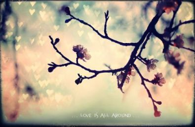 ...  Love Is All Around ...