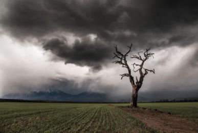 Alone in storm